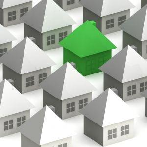 green house among many white houses