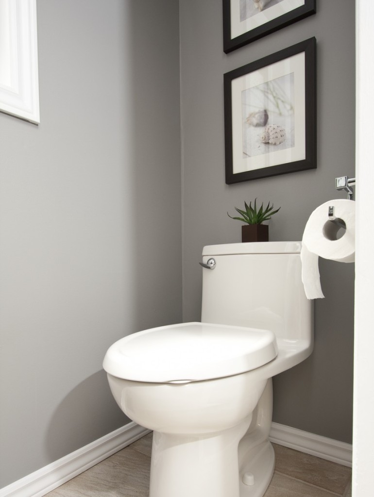Powder Room toilet