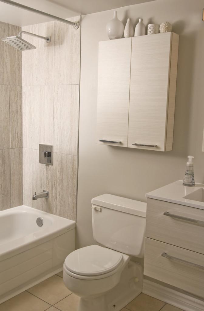 Shower + Toilet